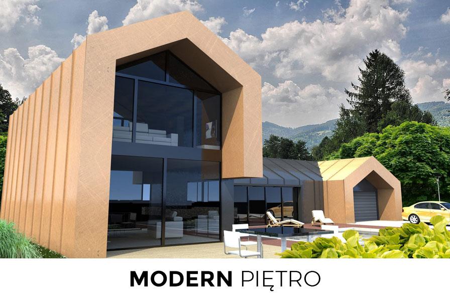 modern_pietro